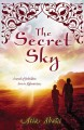 Go to record The secret sky : a novel of forbidden love in Afghanistan